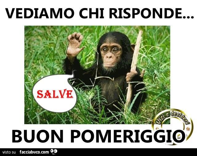 Buon Pomeriggio Da Ridere ~ duylinh for