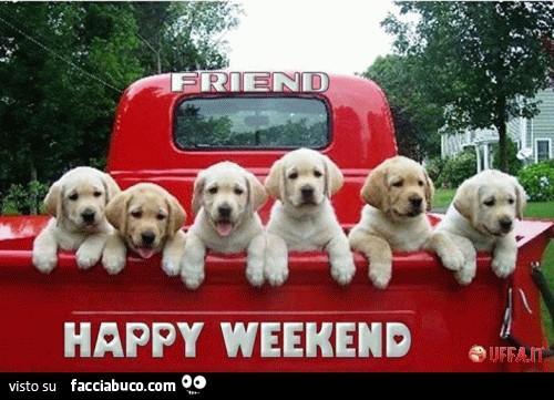 Cani nel furgone rosso. Amici felice weekend - Facciabuco.com