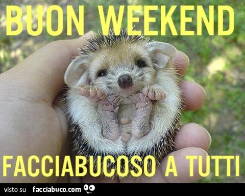Buon weekend facciabucoso a tutti for Buon weekend immagini simpatiche