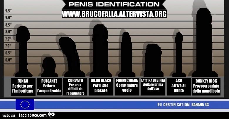 tipi di pene pene